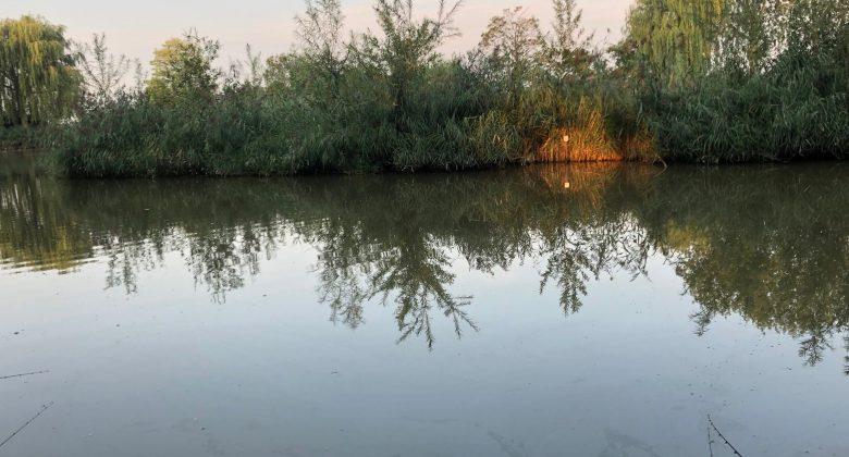 Vissen-Camping